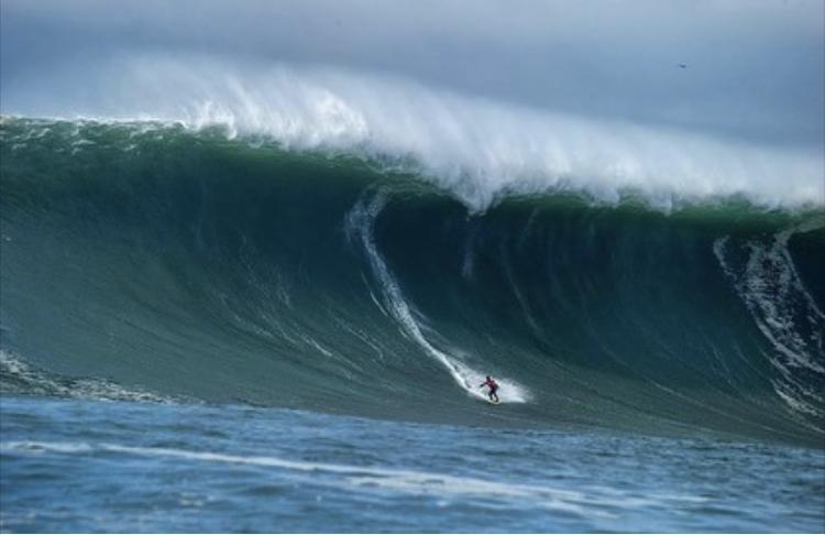 surfline.com